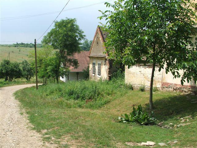 Сви беже из села, али Немања је одлучио да се врати дедовини : Тмава код Куршумлије остала је само са предесетак становника