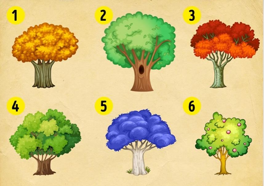 Izaberite drvo i saznajte šta ćete doživeti u 2018. godini!