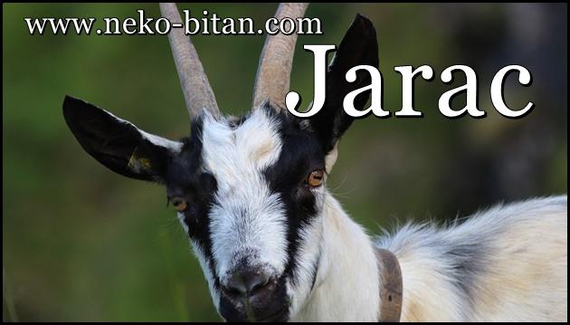 JARAC čini samo DOBRA DELA i zato mu u mesecu JUNU sledi NAGRADA i ostvarenje SVIH ŽELJA!