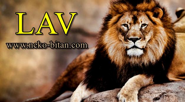 KRALJ: On je rođen da VLADA i DOMINIRA. Voli JAKO I SNAŽNO jer ima ogromno SRCE.