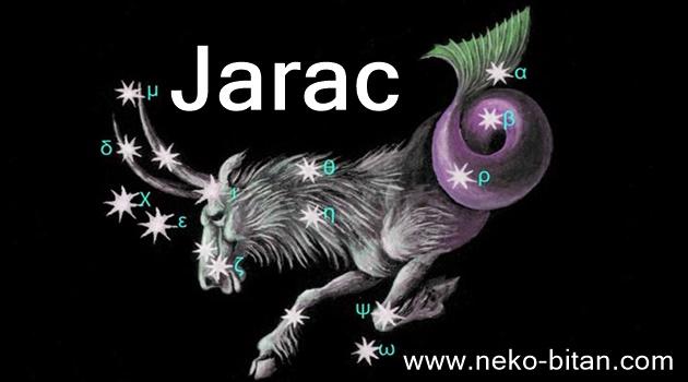 JARAC: Strpljiv, snalažljiv i realan – SPREMAN JE NA SVE zbog ljubavi!