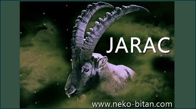 JARAC: Kroz život ide HRABRO i uvek dobija ono što ŽELI – on je POBEDNIK VELIKOG SRCA!
